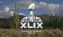Super Bowl XLIX cliff notes